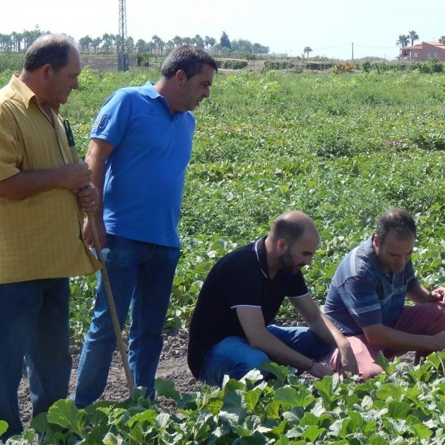 Diputación suma un centenar de productores para potenciar la Ruta del Sabor