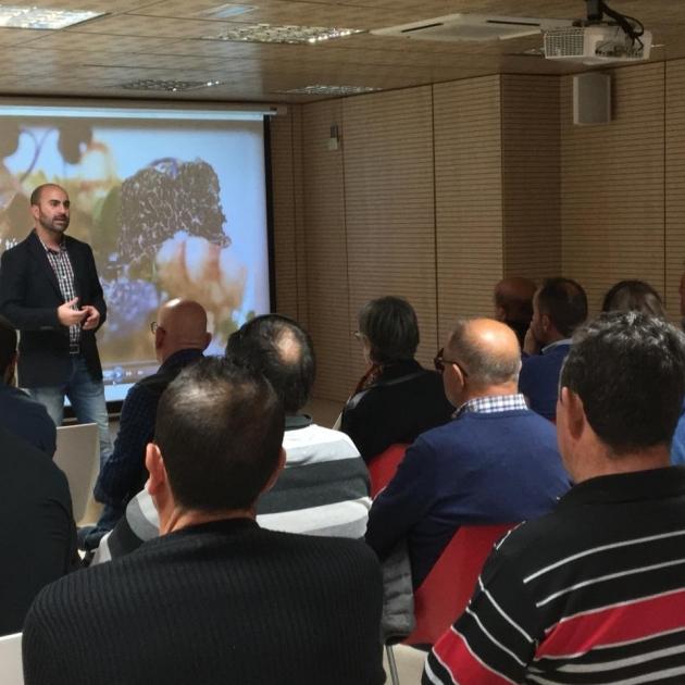 Diputació converteix Castelló en el referent de l'estudi de la truficultura