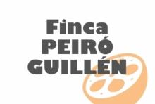 Finca Peiró Guillen